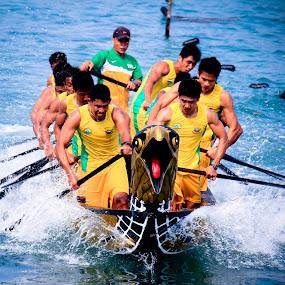 Sea Eagle Boat Race  by Aldo Pasha Permana - Sports & Fitness Watersports ( eagle, sea, boat, race, batam, competition )