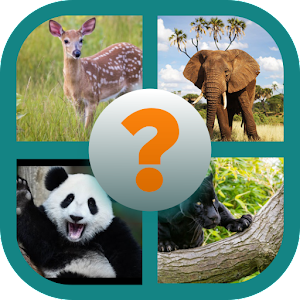 Download free Animal Name Quiz for PC on Windows and Mac