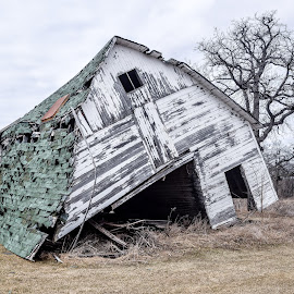 Tipped Over by Jason Lockhart - Buildings & Architecture Decaying & Abandoned ( iowa, road trip, tipped over, old barn, allamakee county )