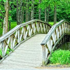 The Walking Bridge by Gregg Rich - Buildings & Architecture Bridges & Suspended Structures ( stream, nature, bridge )