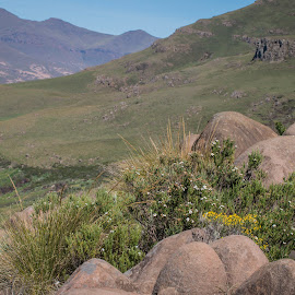 In the mountains. by Lanie Badenhorst - Nature Up Close Rock & Stone ( #adventure, #nature, #landscape, #rocks )