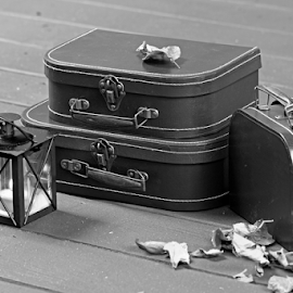 Traveler's luggage by Dipali S - Black & White Objects & Still Life ( baggage, old, handle, luggage, retro, pack, object, travel, rusty, used, aged, transport, pile, leather, classic, handbag, vintage, suitcase, bag, white, journey, departure, vacations, destination, holiday, tourist, color, voyage, box, brown, case, antique )