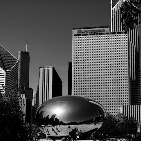 Millenium Park by Cristobal Garciaferro Rubio - City,  Street & Park  City Parks ( park, bean, millenium park, buildings, chicago )