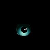 App Executive Eye APK for Kindle