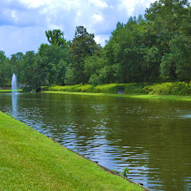 Reflecting Pool by Cal Brown - Landscapes Travel ( south carolina, pond, historic, waterscape, reflecting, travel, landscape )
