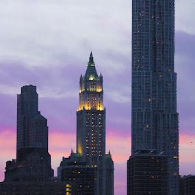 by Lena DeStefano - City,  Street & Park  Skylines