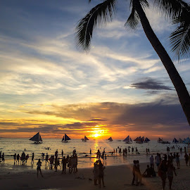 Summer sunset by Poci Jacildo - Landscapes Beaches ( silhouette, sunset, tropical, scenic, beach )