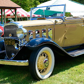 1932 Chevy Roadster. by Doug Hilson - Transportation Automobiles ( car, roadster, 1932, restored )