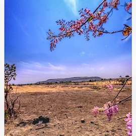 Ananthagiri Hills by AJ Canon - Landscapes Travel ( ananthagiri hills, hyderabad, vikarabad, forest, scenery, landscapes, photography )