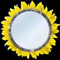 App Mirror - Selfie, Light APK for Kindle