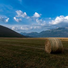 Open space by Mauro Fini - Landscapes Prairies, Meadows & Fields ( pian grande, castelluccio di norcia )