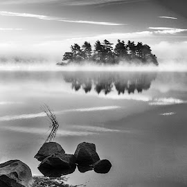 Robins Pond Zig-Zag BW by Carl Albro - Black & White Landscapes ( water, waterscape, trees, rocks, misty )