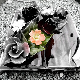cemetery by Lisa Trotter - Black & White Objects & Still Life ( #cemetery )