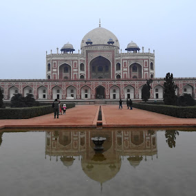 Humayon Tomb by Anu Sehgal - Buildings & Architecture Statues & Monuments (  )