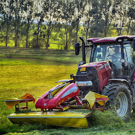Moving  by Marco Bertamé - Transportation Other ( red, moving, grass, green, yellow, tractor )