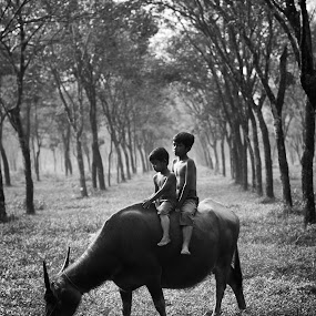 Playing in the Fields by Reza Roedjito - Babies & Children Children Candids