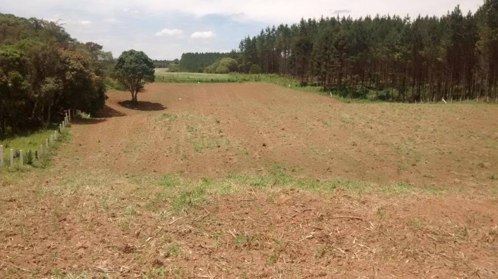 grandes areas para comprar em fazendariogrande jardimveneza