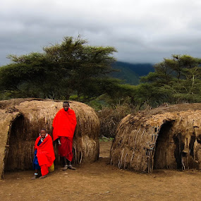 Masai Huts by Tom Howes - City,  Street & Park  Neighborhoods ( tanzania, people )