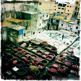 by Tanya Malott - Landscapes Travel ( marrakech, tannery, iphone )