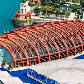 Overturned Boat by Vinod Kalathil - Buildings & Architecture Office Buildings & Hotels ( architecture, singapore )