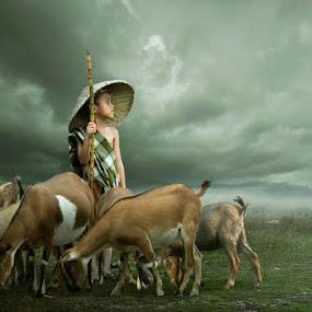 Shepherd by Chegu Diman - Digital Art People