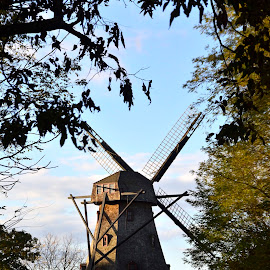 WindMill by Mike DeLong - Buildings & Architecture Public & Historical ( illinios, fox river, dutch, morning, windmill )