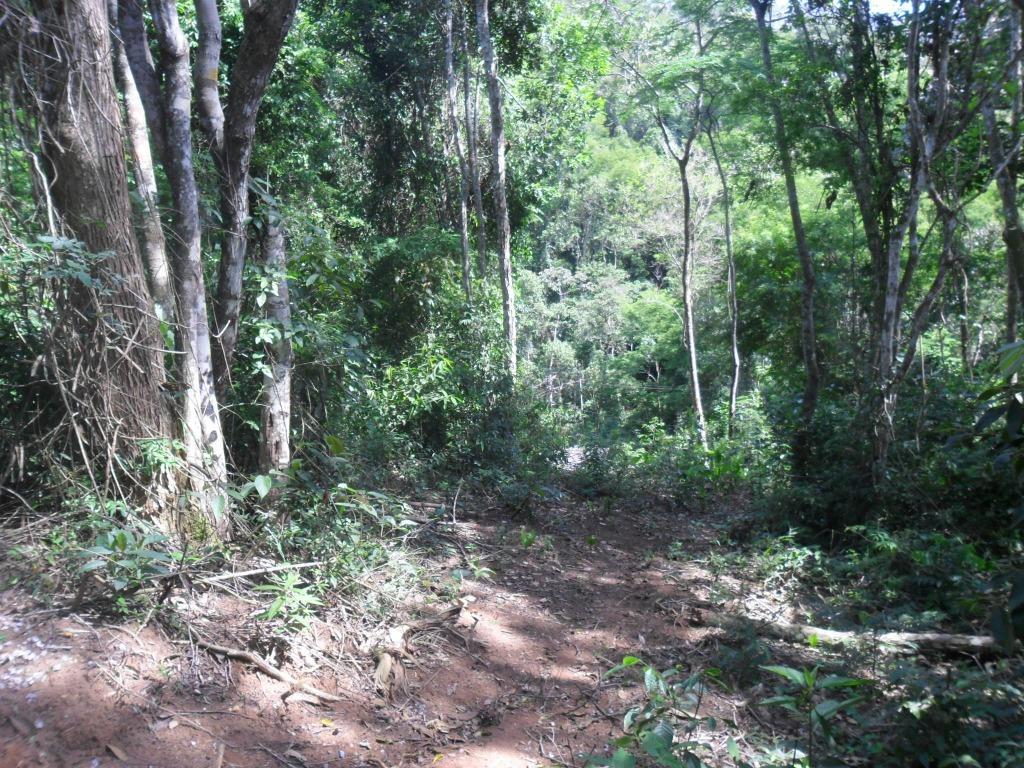 Fazenda / Sítio à venda em Itaipava, Petrópolis - Foto 6