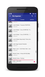 File Organizer for MP3 Musica for pc