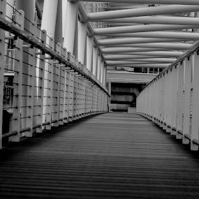 Bridge by Neil Hannam - Black & White Buildings & Architecture ( black and white, object, architecture, bridge,  )