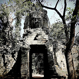Angkor Wat by Rebecca Pollard - Buildings & Architecture Public & Historical