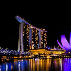 by Mc Melwyn Vergado - Buildings & Architecture Office Buildings & Hotels ( pwcarcreflections-dq, landmark, travel, night, lights )