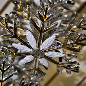 snowflake by Nic Scott - Public Holidays Christmas ( decoration, snowflake,  )
