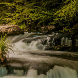 Twisting by Keith-Lisa Bell Bell - Landscapes Waterscapes ( waterfalls, forest, rocks, slowmo, sun )