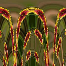 Floral arches by Ada Irizarry-Montalvo - Abstract Patterns