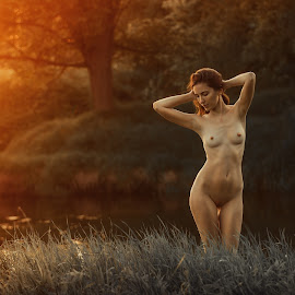 Sunset on the river by Dmitry Laudin - Nudes & Boudoir Artistic Nude ( body, nude, girl, grass, sunset, beautiful, river )