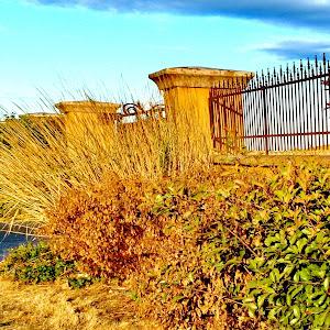 cool fence 2 H20 14x10.jpg