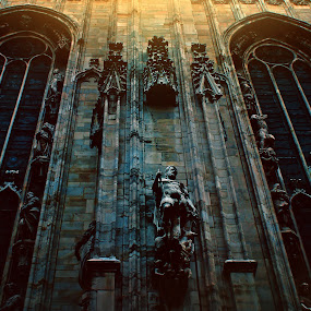Duomo by Lilian Iatco - Buildings & Architecture Statues & Monuments ( contrast, statue, shadow, travel, light )