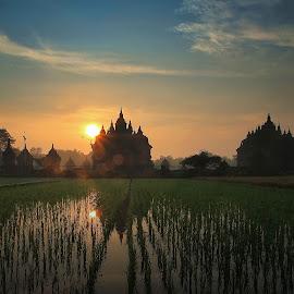 Candi Plaosan by Irwan Setiawan - Buildings & Architecture Statues & Monuments ( temple, plaosan, candi plaosan, indonesia, sunrise, landscape )