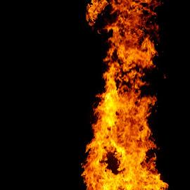 by Savannah Eubanks - Abstract Fire & Fireworks ( bonfire, night, fire )