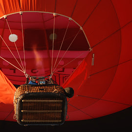 Up Up and Away by Maureen McMullin - Novices Only Sports ( hot air balloon, flight, red, balloon, black sky )