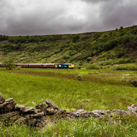 37264  by Martin Tyson - Transportation Roads ( uk, vintage, north yorknshier moors railway, vehicle, 37264, landscape, loco, heritage, yorkshire, locomotive, nymr, train, classic )
