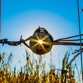 by Bill Phillips - Artistic Objects Other Objects ( colors, farmland, sunshine, skylines, artistic objects, landscape,  )