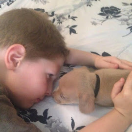 Just A Boy & His Dog by Ricki Keene - Animals - Dogs Puppies (  )