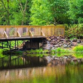 Bridging the Gap by S Trevathan - City,  Street & Park  City Parks ( water, park, nature, outdoors, bridge, relax, tranquil, relaxing, tranquility )