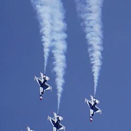 Thunderbirds! by NY Joyce - Transportation Airplanes ( airplanes, jets, air show, military, thunderbirds )