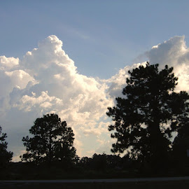 by Kathy Chatfield - Landscapes Cloud Formations