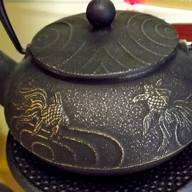 Cast Iron tea pot by Donna Probasco - Novices Only Objects & Still Life (  )