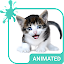 Meow Animated Keyboard