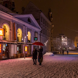 by Mario Horvat - City,  Street & Park  Street Scenes ( winter, cold, umbrella, snow, ljubljana, night )