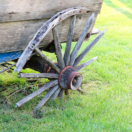 Going nowhere by Michele Williams - Artistic Objects Still Life ( wheel, wagon, cart, rust, decayed, abandoned )